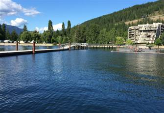 Legacy on Mara Lake Modern Condo with Boat Slip -  1 Bedroom + Den Sleeps 4 - 5