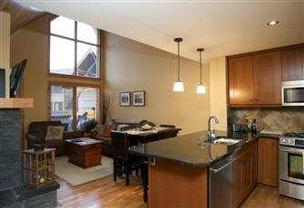 Luxury one Bedroom Condo with Vaulted Ceilings