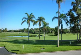 Golf Course outside of the Complex