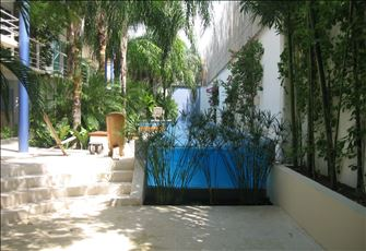 A magical place, tropical located in the Heart of Downtown Playa Del Carmen