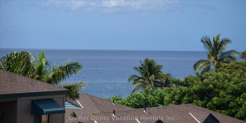 Partial View of Ocean from Lanai