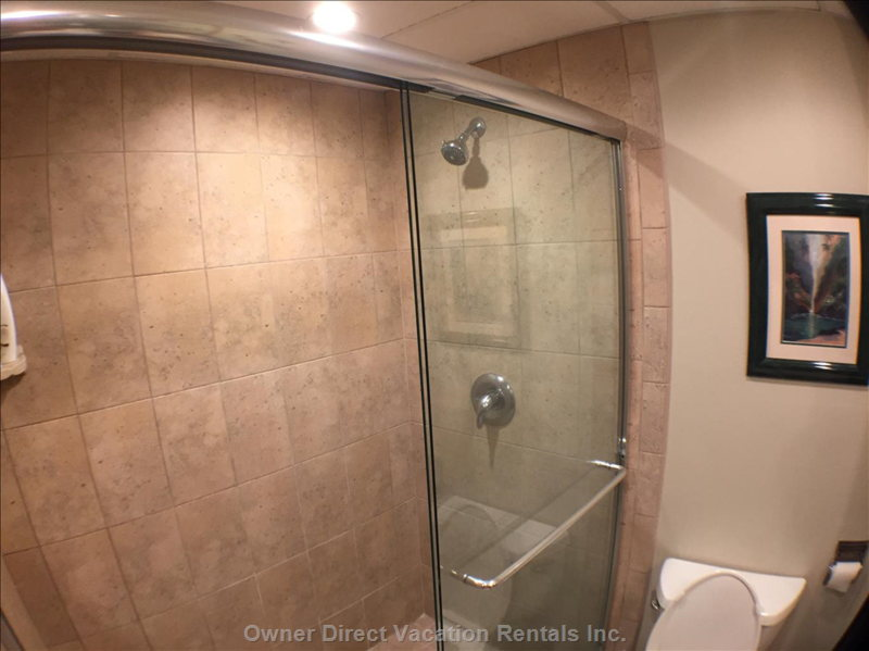 Contemporary Walk-in Shower