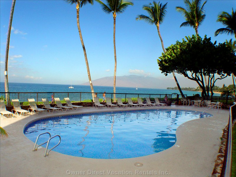 The Fresh Water Oceanfront Pool