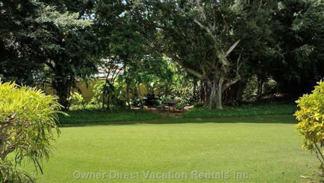 View across the Lawn from Lanai