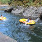 Skutz Falls is a Quick 15 Minutes Away and is a Safe and Fun Way to Experience Swimming in the Cowichan River -