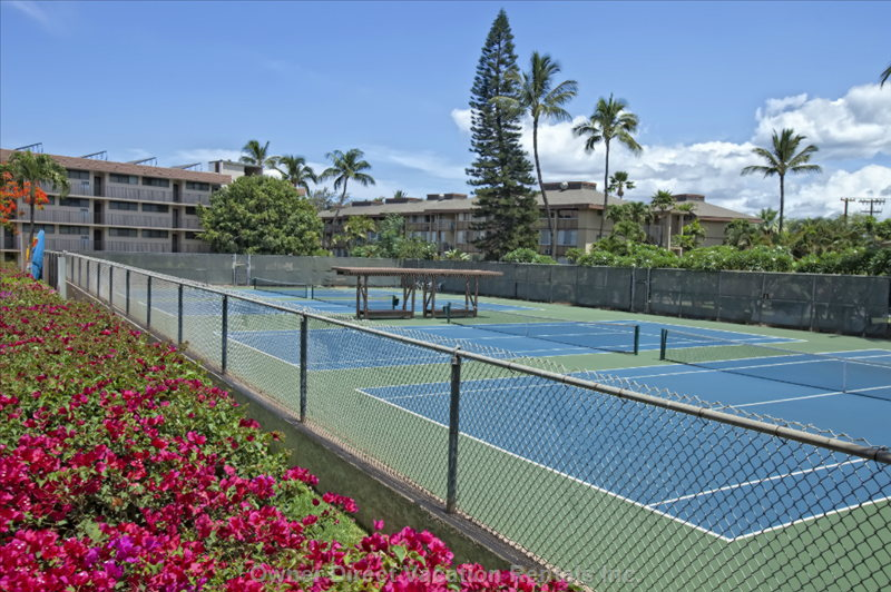 4 on-Site Tennis Courts