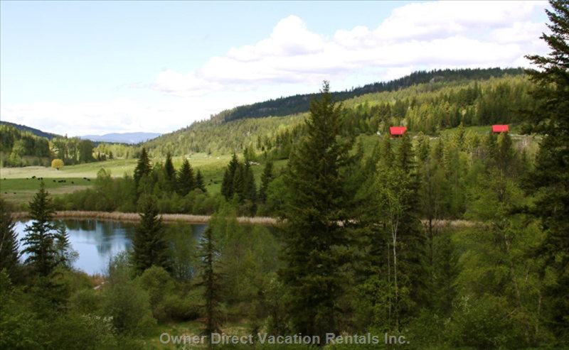 Ultimate Privacy and Space on over 600 Acres of Pristine Wilderness