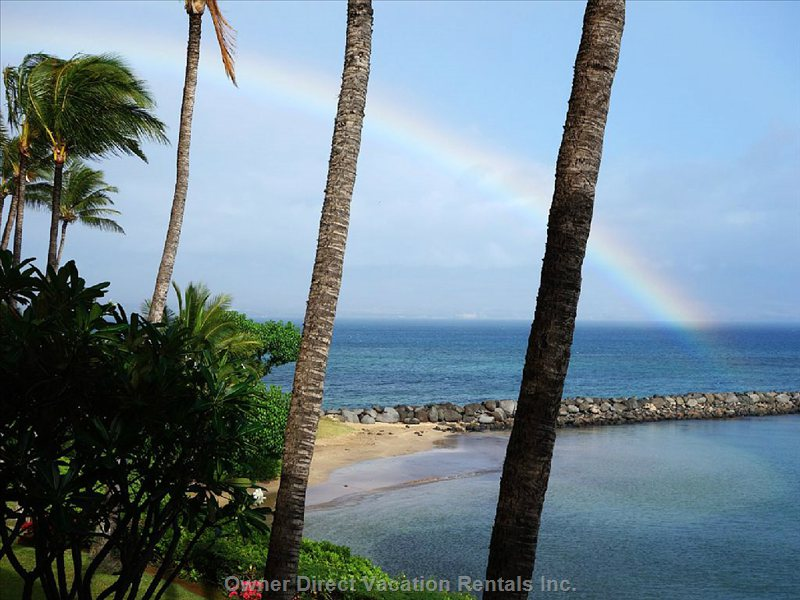 Paradise Right Outside your Lanai.