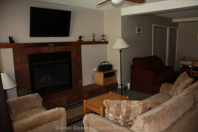 Living Room - Newly Renovated - Couch- Pull out Queen Bed