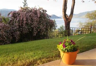 A Comfortable one Bedroom Suite for your Vacation in the South/Central Okanagan