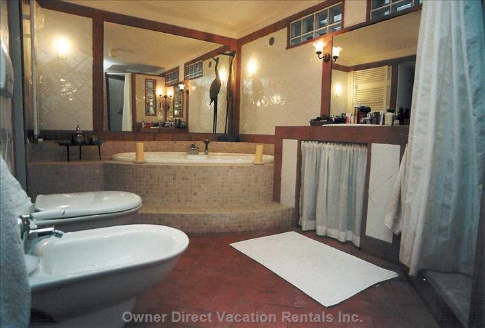 Downstairs Main Bathroom