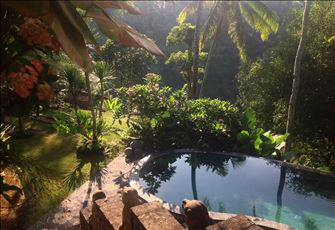 Sublime, Tropical Forest View Villa near Ubud