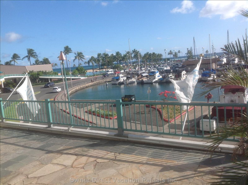 Patio by the Marina, Next to the Beach