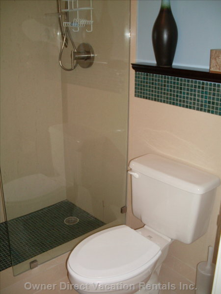 Ensuite Shower Separate